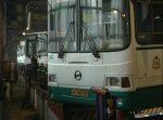 ВНижнем Новгороде сократят количество социальных автобусов