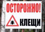 Жительница Южного Урала погибла отклещевого энцефалита